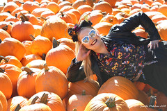 Disney Pumpkin Dreaming (jenelle.melchior) Tags: disney pumpkin patch farm halloween ears mickey dreaming orange gothic fall autumn seattle