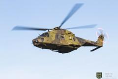 78+30 NH90 TTH (Combat-Camera-Europe) Tags: bw bundeswehr nh90 tth nato otan hubschrauber helicopter helicoptre manöver exercise exercises flight range bergen munster heer