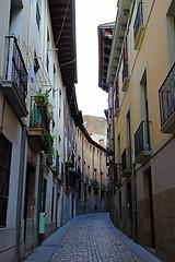 Tudela (Navarra) España. (Txemari - Argazki.) Tags: calle tudela navarra