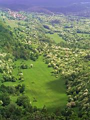 Istrian meadows (Vid Pogacnik) Tags: hrvatska croatia istra istria brest meadow spring hiking outdoors landscape