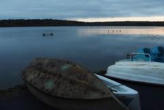 end of the season (humbletree) Tags: lakewingra madisonwi morninglight