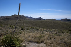 2015 - Texas (Mark Bayes Photography) Tags: bigbendnationalpark texas usa unitedstates chihuahuandesert brewstercounty nationalparkservice americannationalpark westtexas borderingmexico park