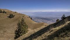 Vue sur le Léman depuis le Grd Mont (Jura) (mrieffly) Tags: htjura grandmont léman alpes chaumes rando