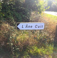 L'âne cuit (the cooked donkey) (nic0v0dka) Tags: