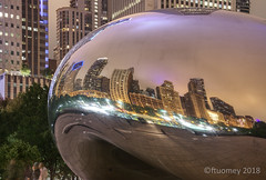 The city had a warped sense of itself... (wirepic) Tags: chicago bean nightime reflection city skyscraper art curve straight sky opposite