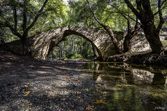Tzelefos bridge (iosif.michael) Tags: tzelefos bridge venetian sony a7 water reflection autumn leaves cyprus nature naturallight colour landscape