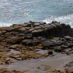Tesselated sandstone near Bogey Hole, Newcastle thumbnail