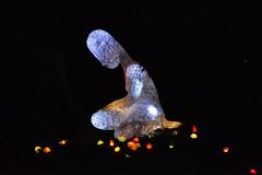 Arts in the Park, Dentonia Park, 80 Thyra Avenue, Toronto, ON (Snuffy) Tags: peopleandtrees artsinthepark dentoniapark 80thyraavenue scarborough toronto ontario canada sarvenazrayati