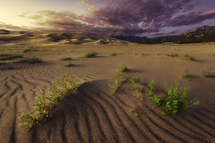 Great sand dunes national park. (3dRabbit) Tags: great sand dunes national park sunset light colorado sungjinahn foreground fineart