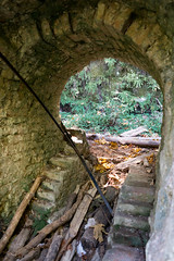 through time and space (Super G) Tags: abandoned limestone kiln arch fern