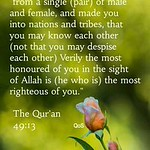 Meilleurs Citations De Jalousie  : The Holy Quran 49:13... https://is.gd/iByWdQ #LaJalousie thumbnail