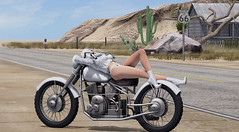 Route 66 (KittyBlue Rae) Tags: secondlife solo motorcycle bike road route66 sunshine dusty leather