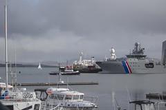 Reykjavík Harbo (ingolfssonvalur) Tags: reykjavíkurhöfn reykjavík haförn harbor