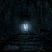 Metro: Last Light Redux / Follow the Light