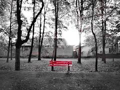 A place for the peace of mind (Baubec Izzet) Tags: baubecizzet nature minimal autumn bench park