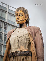 #GiantsLiverpool-2018 (davenewby123) Tags: giantsliverpool2018 liverpool giants cities davenewby2 spectacularshow road people statue building city tower crowd sky giantspectacle liverpoolgiants giantsliverpool