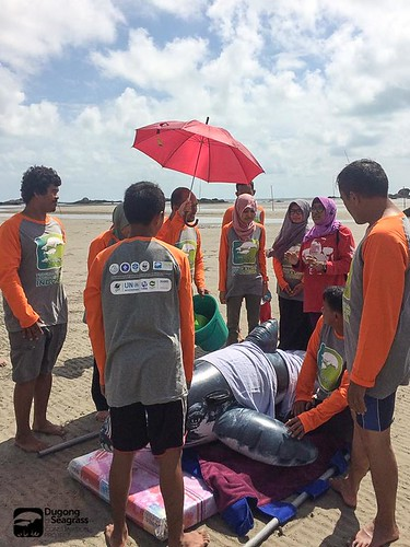 Marine Mammal Stranding Training in Central Bangka 5-7Sep17 (4)