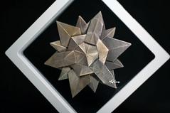 Semi regular Star (talina_78) Tags: hexagon star origami