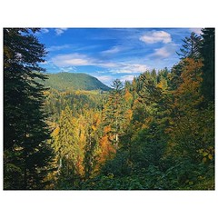 Herbstgold #Berge #Mountains #autumn #Herbst #goldeneroktober #bergwelt #bluesky #blauerhimmel #vsco #vscocam #grenzregion #farben #colors #wandern #breitach #hiking
