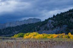 Fall Colors at Cave Lake State Park (Northern Desert Photography) Tags: landscape foliage fallfoliage autumn nevada greatbasin fall whitepinecounty shellcreekrange trees nature natural