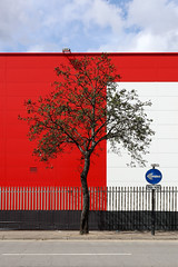 Untitled (Lida Arzaghi) Tags: shadow londontree londonvibes treeshadow tree composition red colors white reflection londoner uk england greatbritain unitedkingdom oneway trafficsign sun geometry geometriegeometry canon urbanphotography streetphotography uraban street streetart urbanart