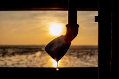 (Femme Peintre) Tags: sonnenuntergang tropfen wasser outdoor silhouette