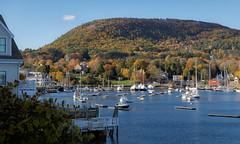 Fall In Camden (johnarey) Tags: schooners foliage fall harbor boats trees park library camden maine mtbattie