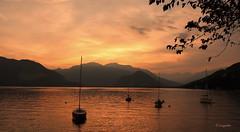 Pallanza - Lago Maggiore: Un tramonto... (hmeyvalian) Tags: lagomaggiore lelacmajeur pallanza verbania verbanocusioossola borromeangulf golfoborromeo piemonte piémont piedmont italia italie italy sunset coucherdesoleil pallanzaverbania