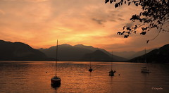 Pallanza - Lago Maggiore: Un tramonto... (hmeyvalian) Tags: lagomaggiore lelacmajeur pallanza verbania verbanocusioossola borromeangulf golfoborromeo piemonte piémont piedmont italia italie italy sunset coucherdesoleil pallanzaverbania bestimagesofitaly