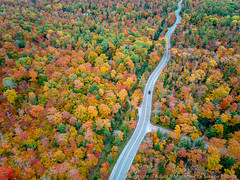 Route 42 Aerial (3scapePhotos) Tags: 3scape djispark doorcounty eggharbor ellisonbay ephraim fishcreek jensjensen northport route42 sisterbay washingtonisland wisconsin autumn beautiful classic color colorful contemporary country countryroad curve curves curvy driving drone fall famous foliage forest fun gillsrock highway hilly landscape landscapes midwest modern natural nature newportstatepark orange path red road roadtrip rockisland route rural rustic scenic scenics trail trees twisty usa wallart winding
