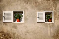 Window (Siuloon) Tags: window architektura architecture architettura malta mdina