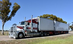 Wickhams (quarterdeck888) Tags: trucks truckies transport australianroadtransport roadtransport lorry primemover bigrig overtheroad class8 heavyvehicle highway road truckphotos nikon d7100 movingtrucks jerilderietrucks jerilderietruckphotos quarterdeck frosty expressfreight generalfreight logistics overnightfreight highwayphotos semitrailer semis semi flickr flickrphotos t909 909 kenworth bdouble wickham wickhams wickhamfreightlines kenworthbdouble refrigeratedtransport
