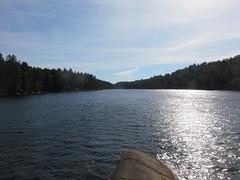 Lake of the Woods 7 (D. S. Hałas) Tags: halas hałas canada ontario sudburydistrict manitoulindistrict carlyletownship killarney killarneylakelandsandheadwatersprovincialpark lakeofthewoodstrail lakeofthewoods