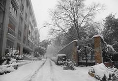 Moda Istanbul (ustegen) Tags: moda istanbul snow winter saintjoseph