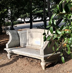 Serious Bench (Melinda Stuart) Tags: cal campus seat bench scroll leaves shade note uc miningcircle cast marble stone