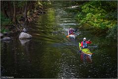 Kanutour (geka_photo) Tags: gekaphoto oppendorf schleswigholstein deutschland schwentine kanu kanuten herbst wasser fluss bunt