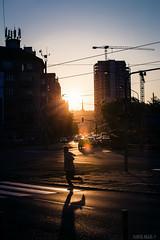 IMG_4340 (samuel_okkel) Tags: street run city urban town sunset crane building cars decisive moment backlight contrast color silhouette bratislava slovakia račianske mýto racianske myto autumn