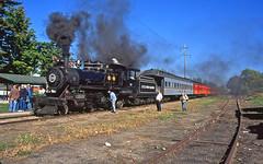 Layover in Quincy (craigsanders429) Tags: littleriverrailroad littleriverrailroadno110 passengertrain passengercars steamlocomotives steamtrain steamexcursions
