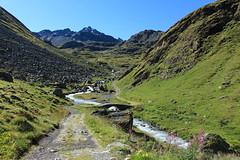 joli petit pont (bulbocode909) Tags: valais suisse nendaz lagouille montagnes nature paysages ponts torrents eau rochers chemins vert bleu fleurs