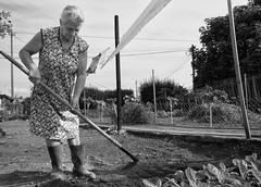 Working For A Living - 2 (annie.cure) Tags: atmosphere blackandwhite grandmother field porto portugal portrait perspective people photojournalism details canon 750d effect exposure texture mysterious monochrome mood movement noise view work boots