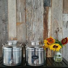 #repurposed #barnwood #siding #winery #vineyard #winetasting #waterdispenser #sunflower #freshflowers #amity #oregon (Heath & the B.L.T. boys) Tags: instagram oregon wine wood repurpose label chalkboard sunflower flowers vase