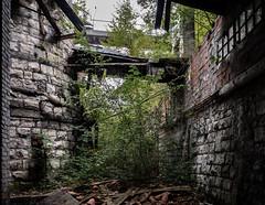 Old furnace abandoned/3 (Frigo78) Tags: olympusphotography abandonedplaces luoghiabbandonati archeologiaindustriale industrialarcheology olympuspenf olympuspen olympus fornace furnace