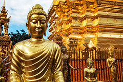 All That Glitters is Not Gold (Matt Molloy) Tags: mattmolloy photography watphrathatdoisuthep temple gold chedi stupa shrine structure intricate art decoration fence buddha sculptures statues theravada buddhist religion symbolism chiangmai thailand lovelife bling goldongoldongold