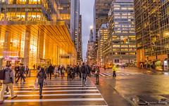 42nd street, Midtown | NYC (EugeneClassyAlbum) Tags: newyork nyc newyorkcity newyorklife ny newyorkphotography night nightlight rain sony sonya7 sonyphotography bigapple streetphotography street sunset dusk