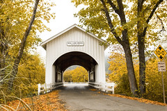 Neal Lane covered bridge, Oregon (Bonnie Moreland (free images)) Tags: covered bridge oregon autumn fall foliage color change leaves orange yellow fence neallane