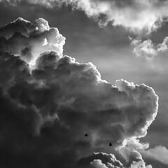 Monsoon Clouds (Parveen Singh) Tags: clouds cloudy monsoon sun sunlight sunrays rays blackandwhite bw birds sky monochrome shape huge canon canon550d