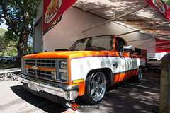 C10s in the Park-6
