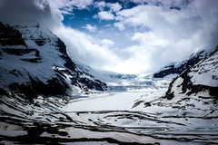 Fields of Icy White (Alison Claire~) Tags: columbiaicefields alberta canada north america nature outdoor outdoors ice glacier snow white tree mountain mountains landscape rock explore explorer provincial national park cloud cloudscape skyscape canon canoneos canoneos600d eos eos600d 600d rebelt3i