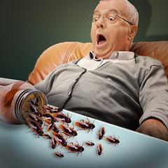 Fear of medicine (jaci XIII) Tags: homem pessoa medo inseto barata man person fear insect cockroach