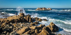17 Mile Drive (harrysonpics) Tags: rubyprincess latexpeditions cruise monterey